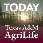 Texas A&M College of Agriculture and Life Sciences awardees honored