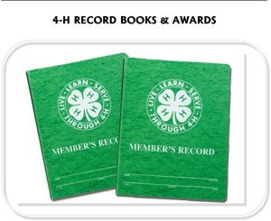 RECORDBOOKSANDAWARDS