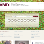 TVMDL Launches new website look