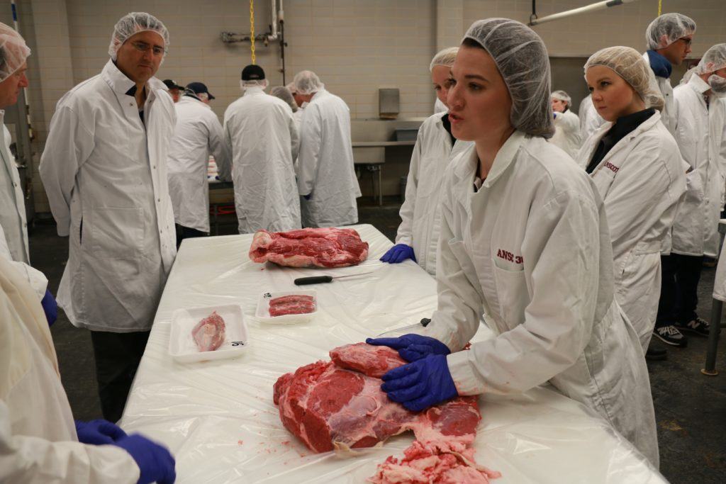 Hillary Henderson demonstrating different cuts of beef