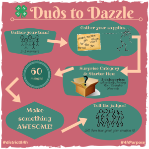 Duds to Dazzle infographic