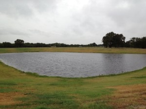 Pond after treatment