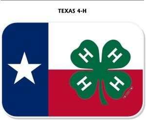 Image result for texas 4h