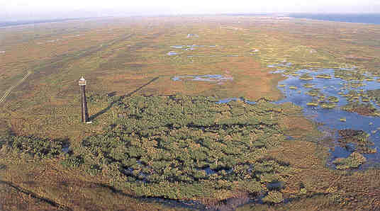 Barrier Island Interior Wetlands